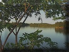 foto_terras